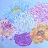Favorite Florals, colored pencil on paper, 2012