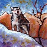 Majestic Malamute, Acrylic on canvas- 6 in x 6 in- SOLD