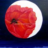 Moon Meditation with Red Poppy, Acrylic on Canvas- 36 in x 36 in – Not For Sale